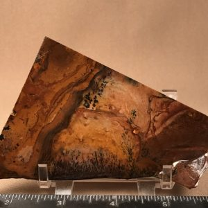 Biggs jasper dendritic slabs