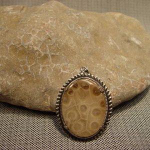Rough, Petoskey Stone, fossil
