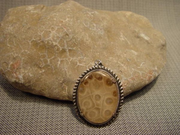 Rough, Petoskey Stone, fossil
