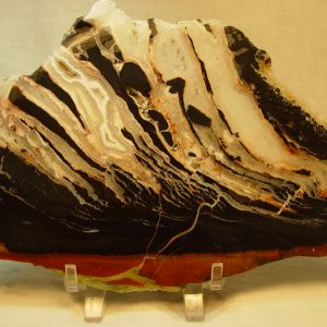 Black zebra agate slabs