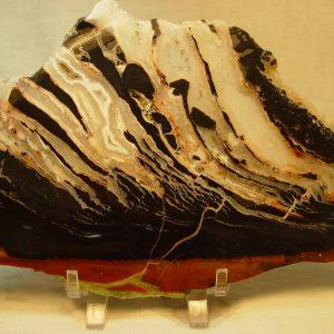 Black zebra agate slabs